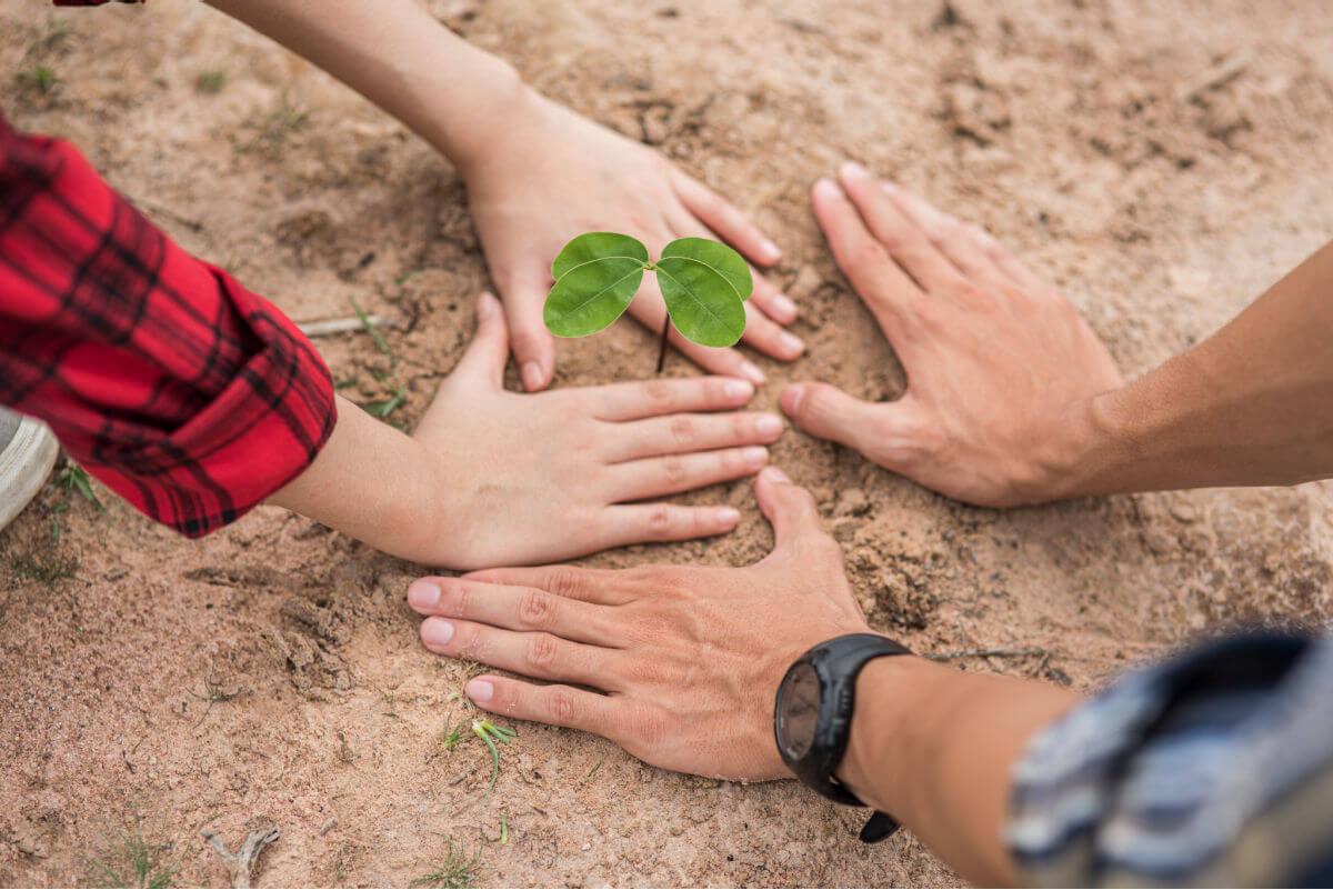 Nominiert_als_Business_Speakerin_des_Jahres_Carmen_Hentschel_mit_jeder_Stimme_wird_ein_Baum_gepflanzt